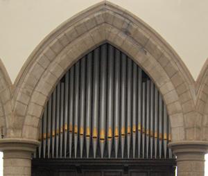 organ04